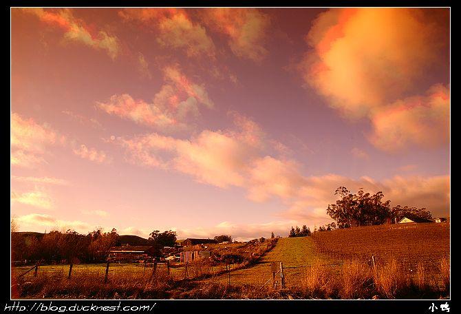 open_img(&#39http://gallery.ducknest.com/albums/album200/APICT9703_S.jpg&#39)