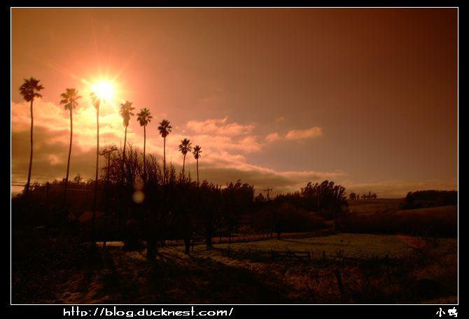 open_img(&#39http://gallery.ducknest.com/albums/album200/sunsetcombine_s.jpg&#39)