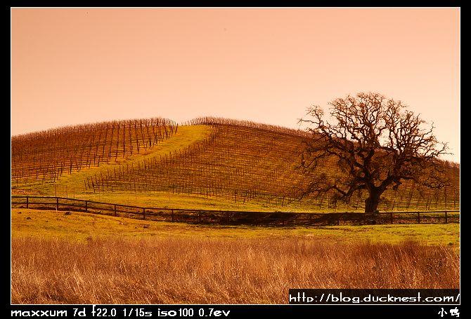 open_img(&#39http://gallery.ducknest.com/albums/album205/nEO_IMG_PICT9955.jpg&#39)