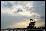 nEO IMG PICT7899