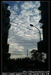 nEO IMG PICT8587