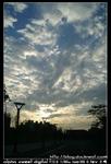 nEO IMG PICT8596