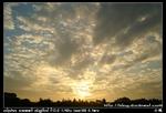 nEO IMG PICT8603