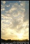 nEO IMG PICT8608