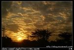 nEO IMG PICT8614
