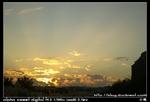 nEO IMG PICT8806