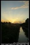 nEO IMG PICT8809