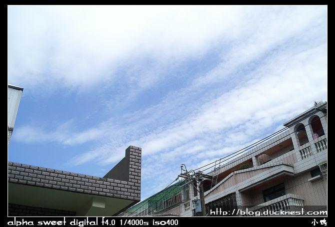 nEO IMG PICT8907
