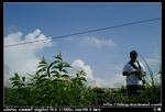 nEO IMG PICT9309