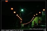 nEO IMG PICT8529