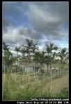 nEO IMG PICT7332 29 30 31 Enhancer