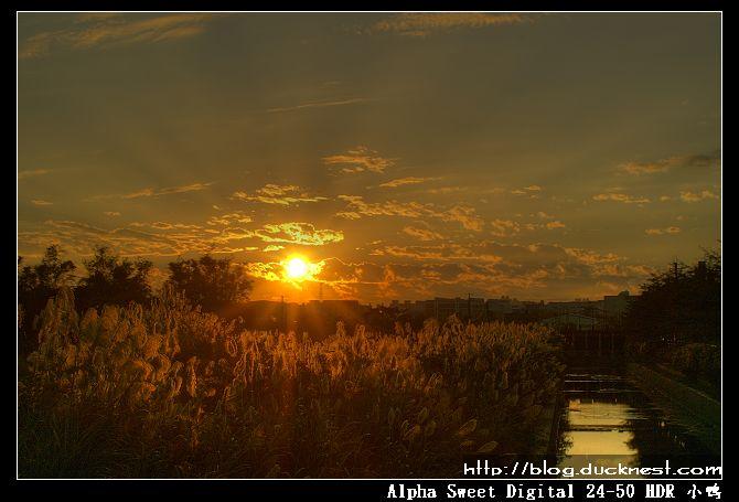 nEO IMG PICT8778 6 7 Enhancer