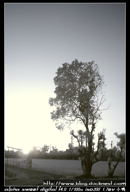 nEO IMG PICT0192