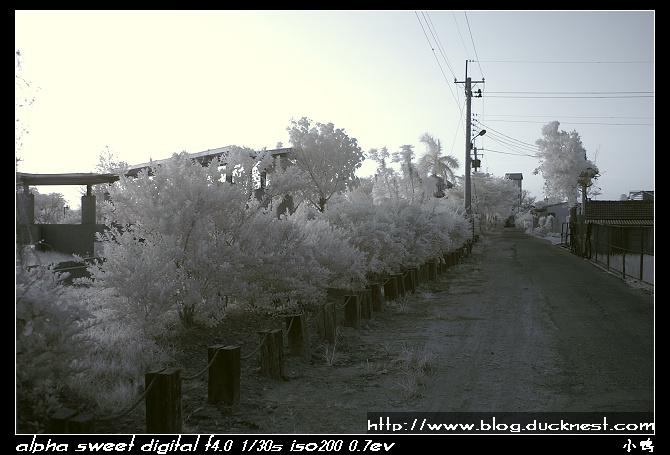 nEO IMG PICT0199