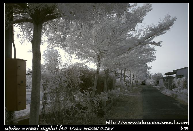 nEO IMG PICT0210