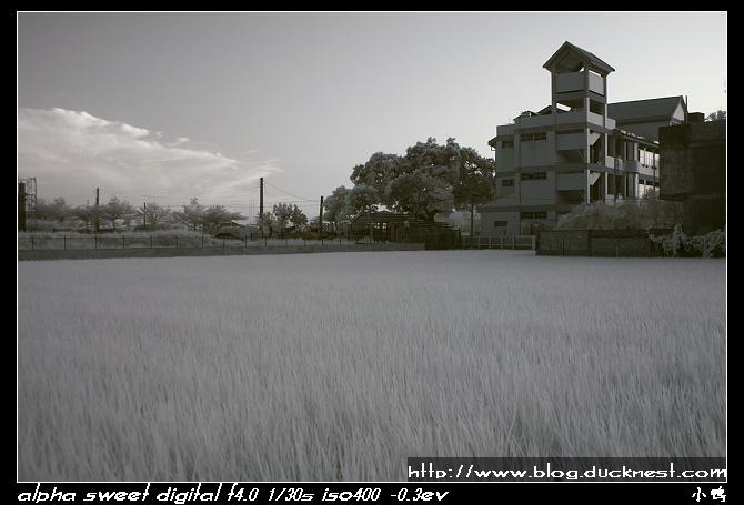 nEO IMG PICT0218