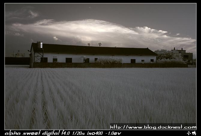 nEO IMG PICT0225